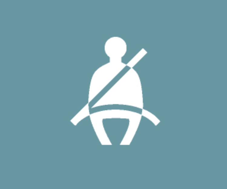 Seat Belt Reminder (Driver's Side)